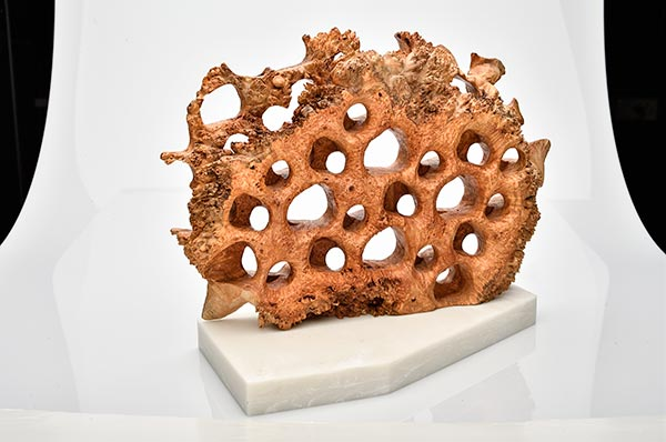 One-of-a-kind sculptures