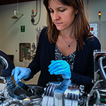 UNT researcher Dr. Diana Berman in her lab at Discovery Park on the UNT campus